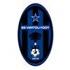 Logo ESV.png